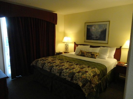 Best Western Plus Cedar Inn & Suites: view of the bedroom