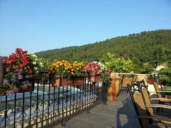 Vue de la terrasse le matin picture of hotel restaurant - Porte terrasse ...
