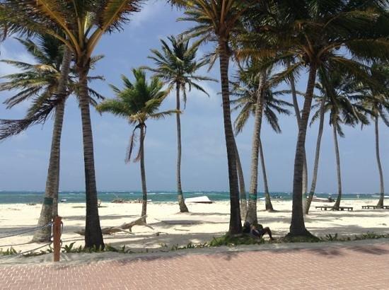 Hotel Casablanca : playas san andres