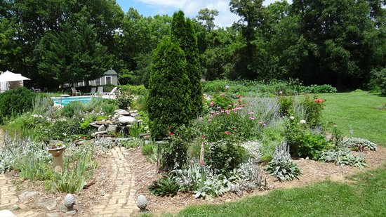 Lackawanna B&B: Lackawanna garden