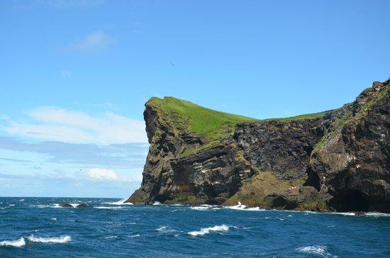 Viking Tours Westman Islands