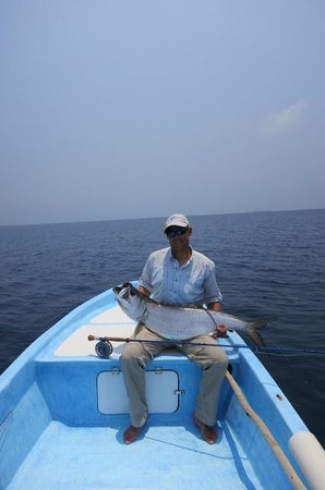Tarpon Caye Belize: 1