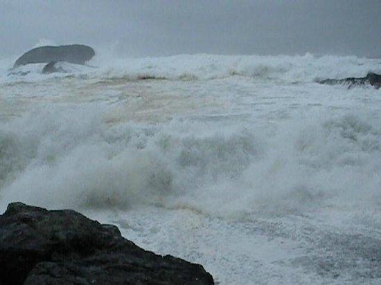 Sea Star Beach Retreat: Chestermans (winter storms)