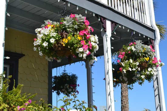 Bayfront Marin House Historic Inn: Hanging baskets greet you on your baycation.