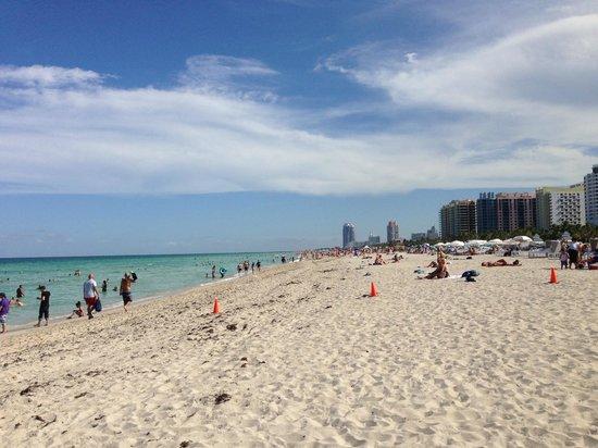The Raleigh Miami Beach: Beach