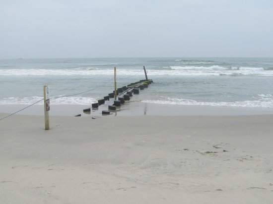 Cape May National Wildlife Refuge : Two Mile beach