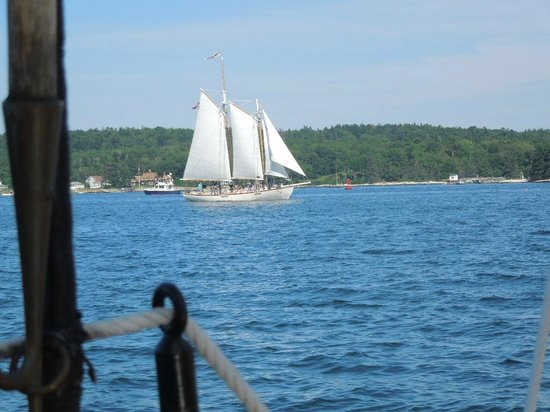 Schooner Lazy Jack: On  the Lazy Jack...loving the view of the other ships passing by...