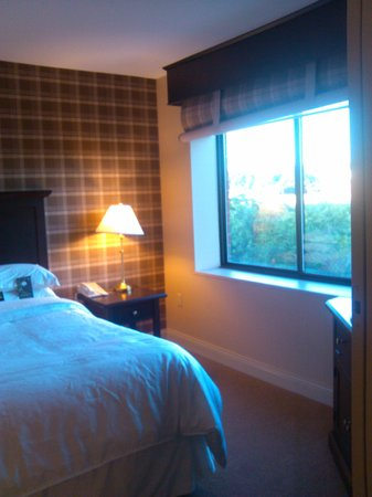 Sheraton Suites Akron/Cuyahoga Falls: The king bed with a view