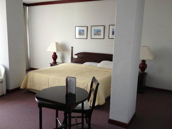 Hotel Excelsior Asuncion: Guest room
