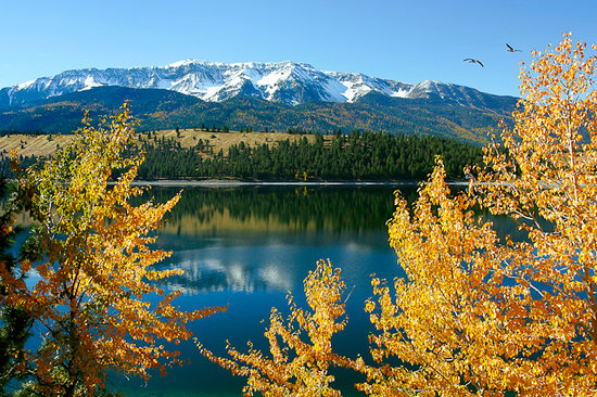 Flying Arrow Resort : Lake