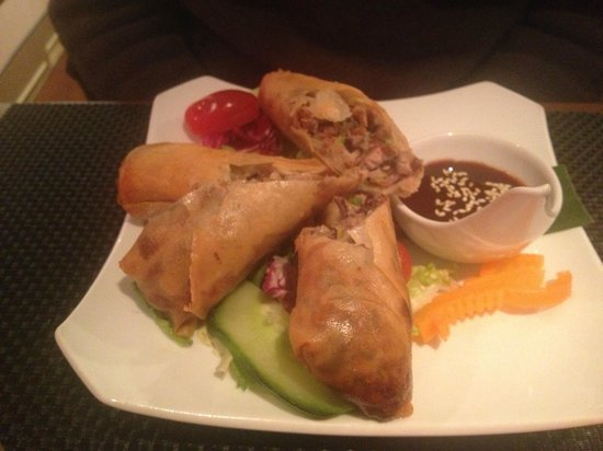 Da Nang Kitchen: Lovely stuffed spring rolls with a tasty hoi-sin sauce