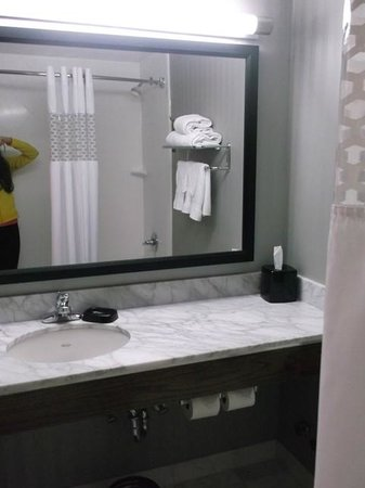 Hampton Inn Manhattan-Seaport-Financial District: Bathroom in standard room