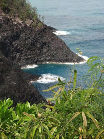 Kilauea Point National Wildlife Refuge: View from near the lighthouse.