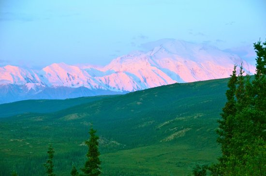 Camp Denali: Denali from our cabin, 4:00 AM