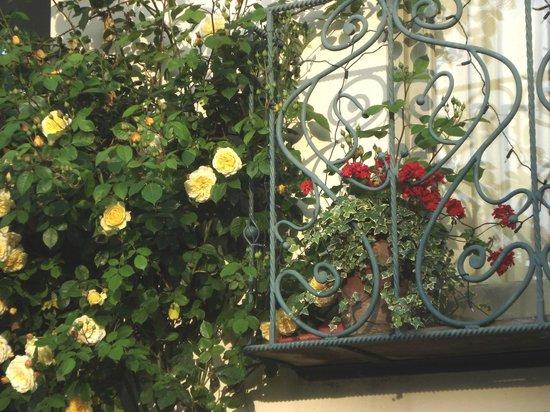 Evesham Lodge Bed & Breakfast: Balcony