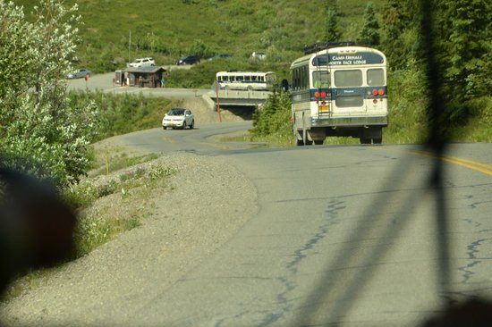 Camp Denali: Bus ride to the camp
