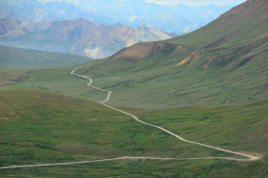 The long and winding road to Camp Denali