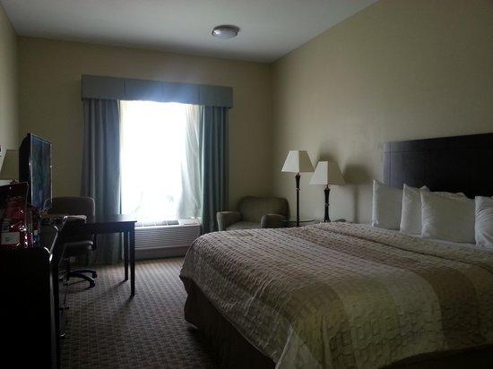 Best Western Sugarland Inn: Our Room