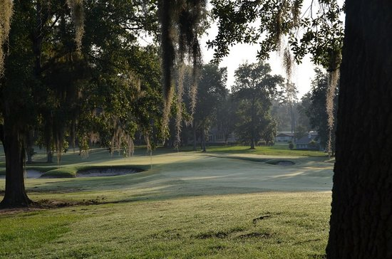 Ocala National Golf Club: Early morning - first hole, Par four, 321 yds, from white