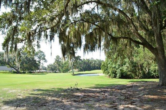 Ocala National Golf Club: Sixteenth hole, Par Four, 426 yds. Stay to the left.