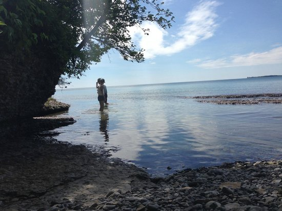 Point Petre Wildlife Conservation Area: Waterview