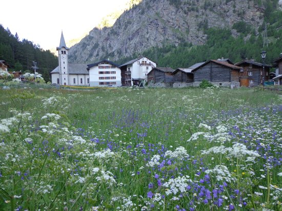 Wellness and Vitalhotel Pirmin Zurbriggen : Hotel Nahe Umgebung