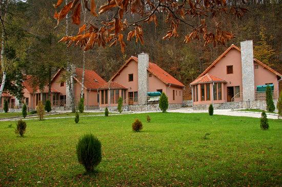 Green Village Hotel: getlstd_property_photo