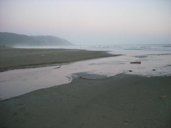 Crescent Beach Motel: view of beach a short walk from motel