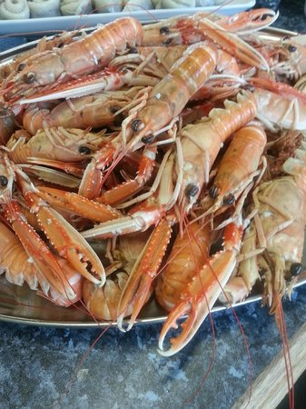 Covesea Cafe: fresh langoustines from moray firth