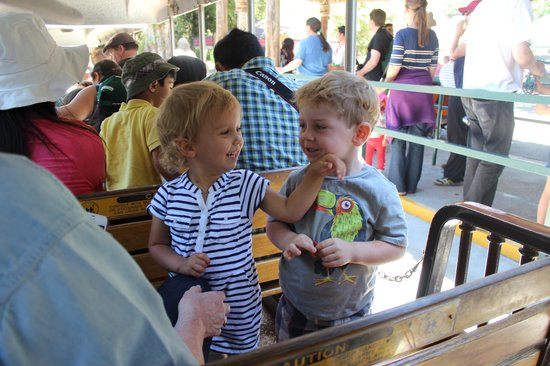Oakland Zoo: Delightful little train ride