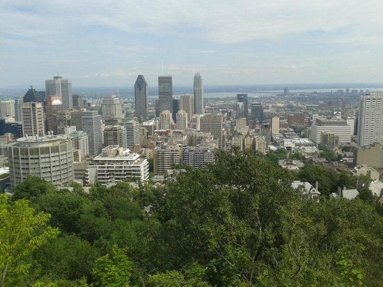 A la Carte Bed & Breakfast : View from Mount Royal