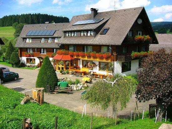 Pension-Landhaus Rombach: Landhaus Rombach
