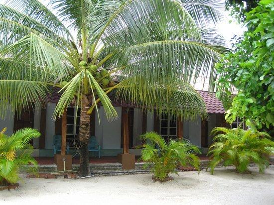 Yoga Now Langkawi: View of the hotel where we stay - Senari Bay Resort