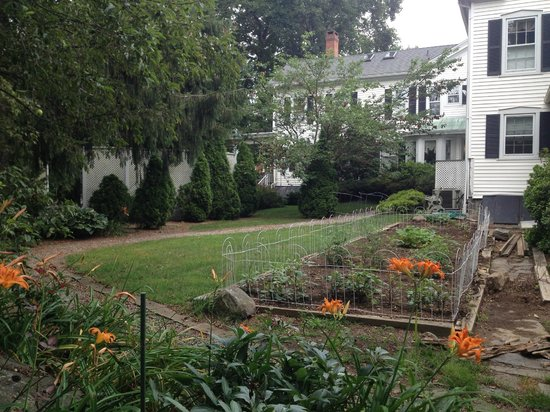 Scranton Seahorse Inn: View of the back garden