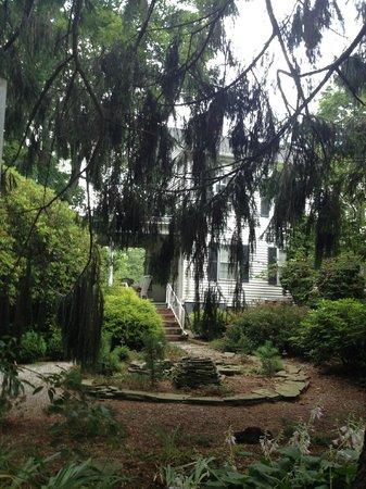 Scranton Seahorse Inn : View of the back garden