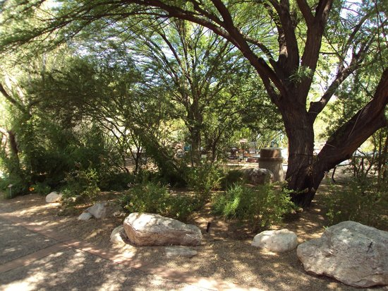 Tucson Botanical Gardens: Garden Paths