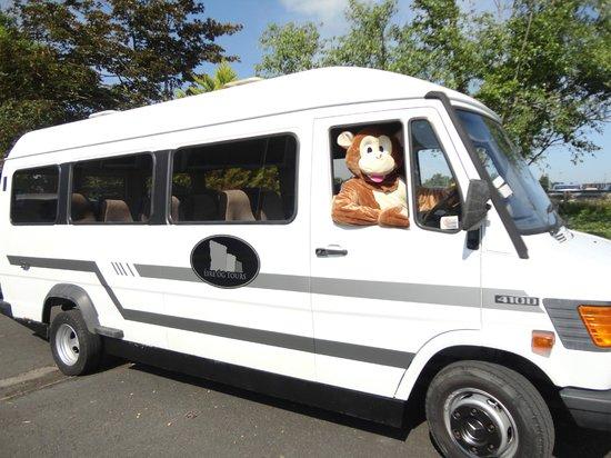 Eire Og Tours - Day Tours: Monkeying Around