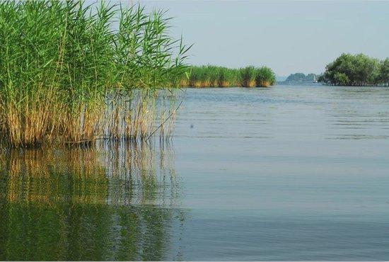 La Locanda al Lago: attraverso il canneto