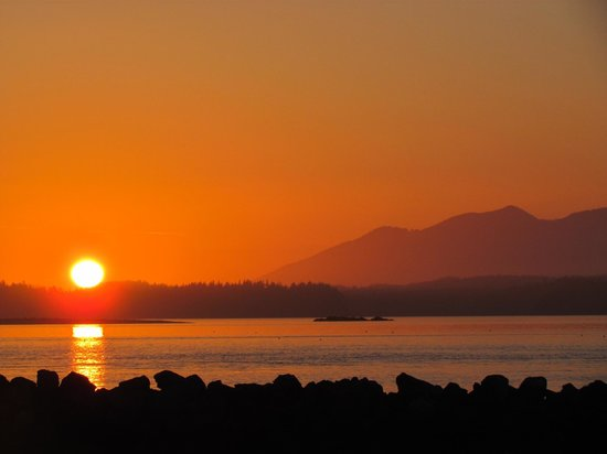 Tofino Trek Inn : Sunset view just 50 metres down from the front door