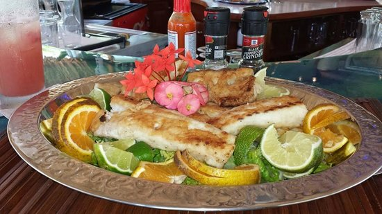 Chabil Mar: I caught a king mackerel and they cooked it for us.. only $10 USD... it was delicious!