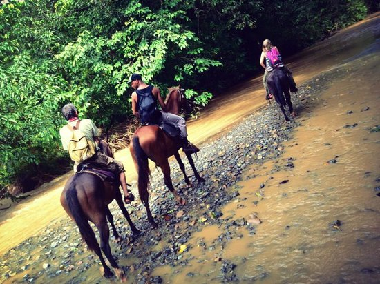 Bosque del Cabo Rainforest Lodge: horseback riding tour