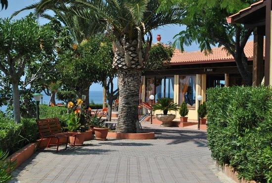 Residence-Hotel New Paradise : terrazza
