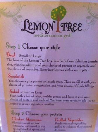 Lemon Tree Mediterranean Grill: Mediterranean Chipotle