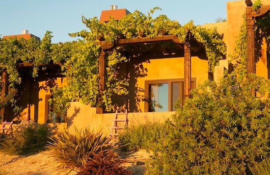 Wild Coyote Estate Winery Bed & Breakfast: On a beautiful sunrise morning