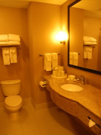 Comfort Suites Newport News Airport: bathroom
