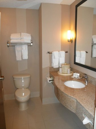 Comfort Suites Airport : bathroom