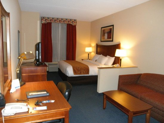 Comfort Suites Airport : room