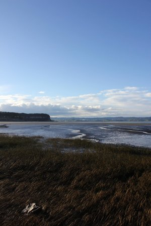 Kawhia Beachside S-Cape Holiday Park: Vue sur la baie au réveil