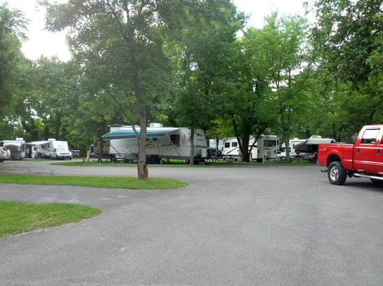Foothills RV Park & Cabins: Looking from site 6 towards bath house