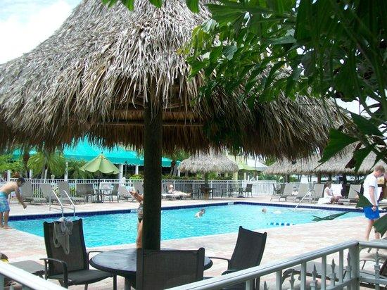 Holiday Inn Key Largo : Pool